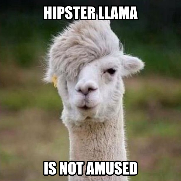 Image result for llama meme