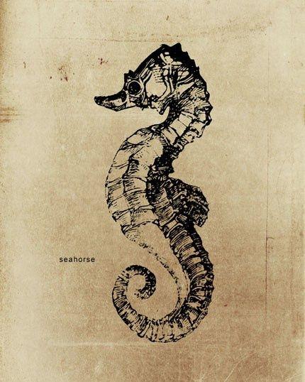 seahorse print | Antique prints | Pinterest | Tattoo and Sea horse ...