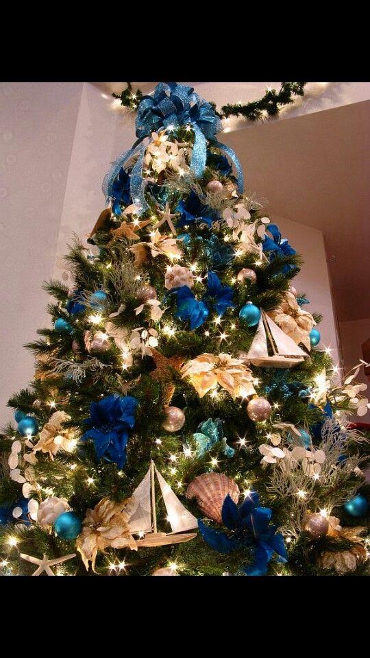 Blue poinsettias and sea shells christmas Pinterest Poinsettia