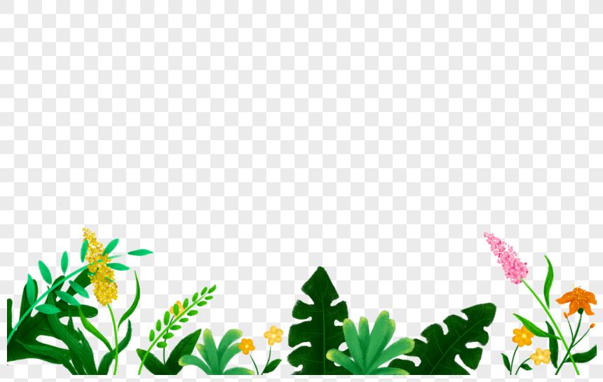 Element Png De Plante De Fleur ในป 2021 โปสการ ด วอลเปเปอร ส อด จ ท ล