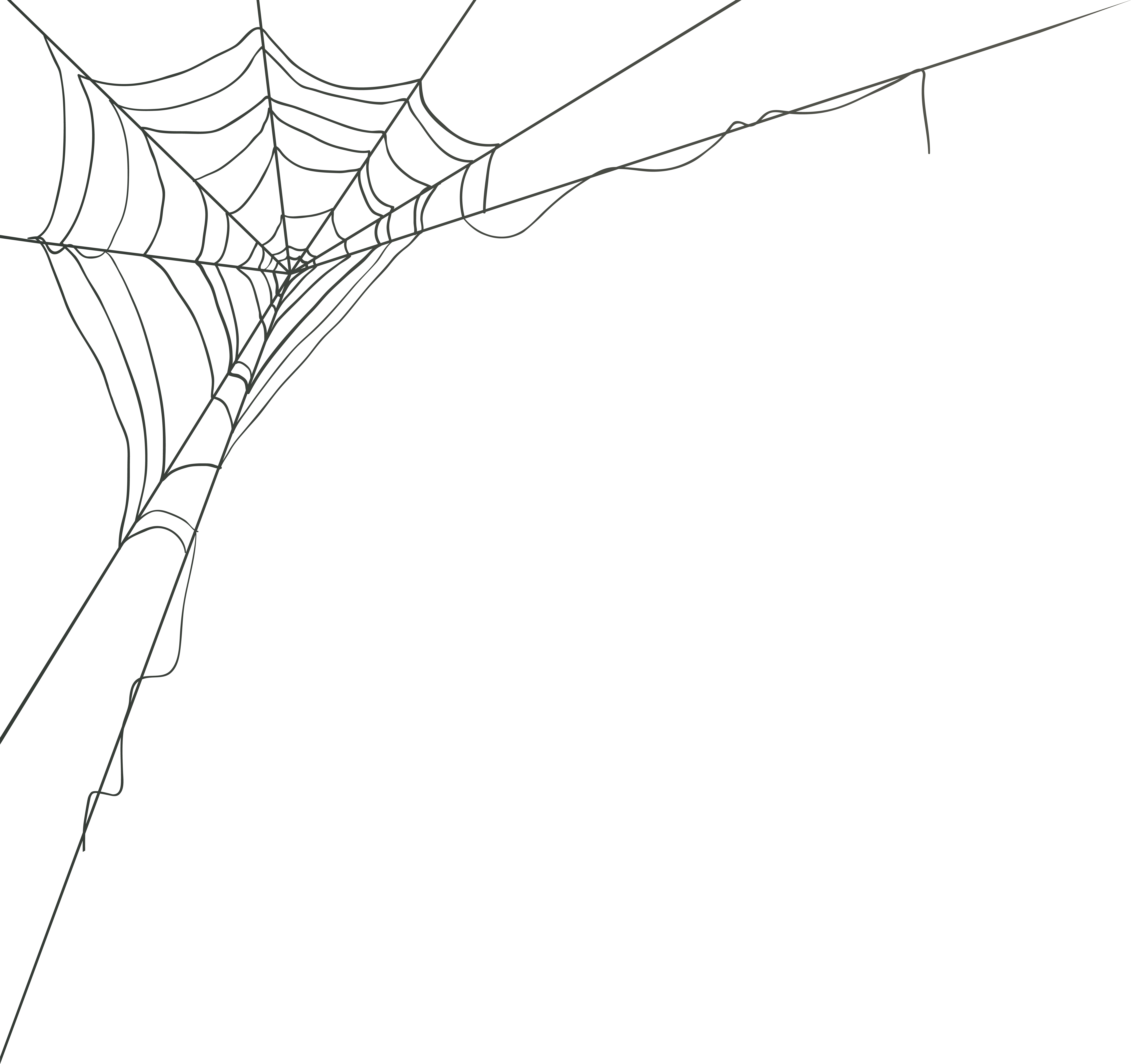 Spider Web Corner Png Clip Art Image Gallery Yopriceville High Quality Images And Transparent Png Free Clipart Spider Web Drawing Spider Art Spider Web
