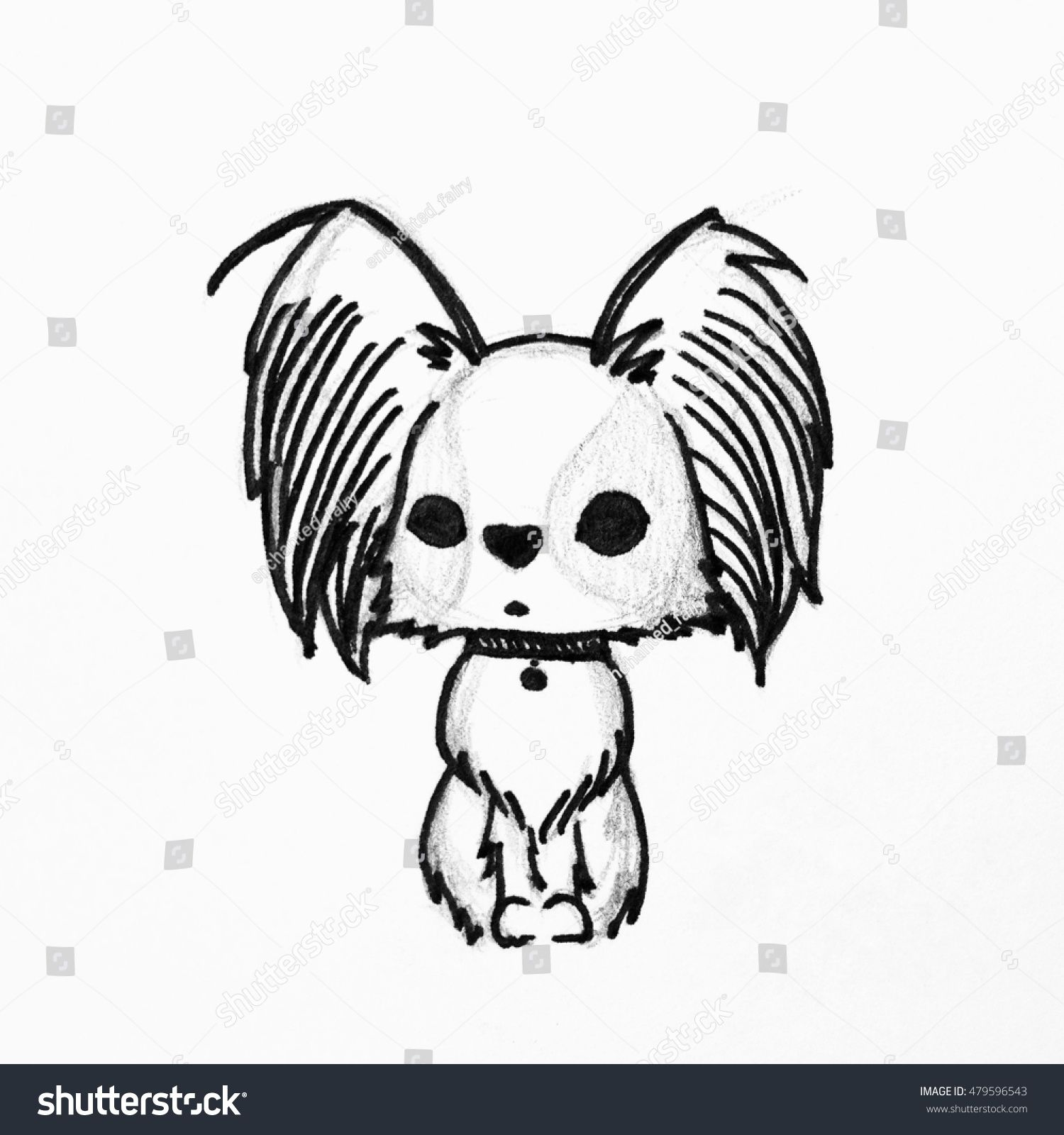 Cute cartoon dog hand drawing of papillon dog or butterfly dog continental toy spaniel papillon hand drawing isolated objects on white background for