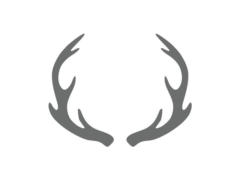 Current image within printable deer antlers