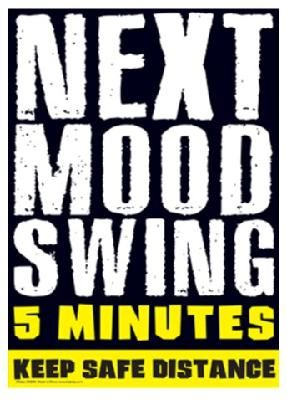 Next Mood Swing 5 Minutes Funny Metal Sign