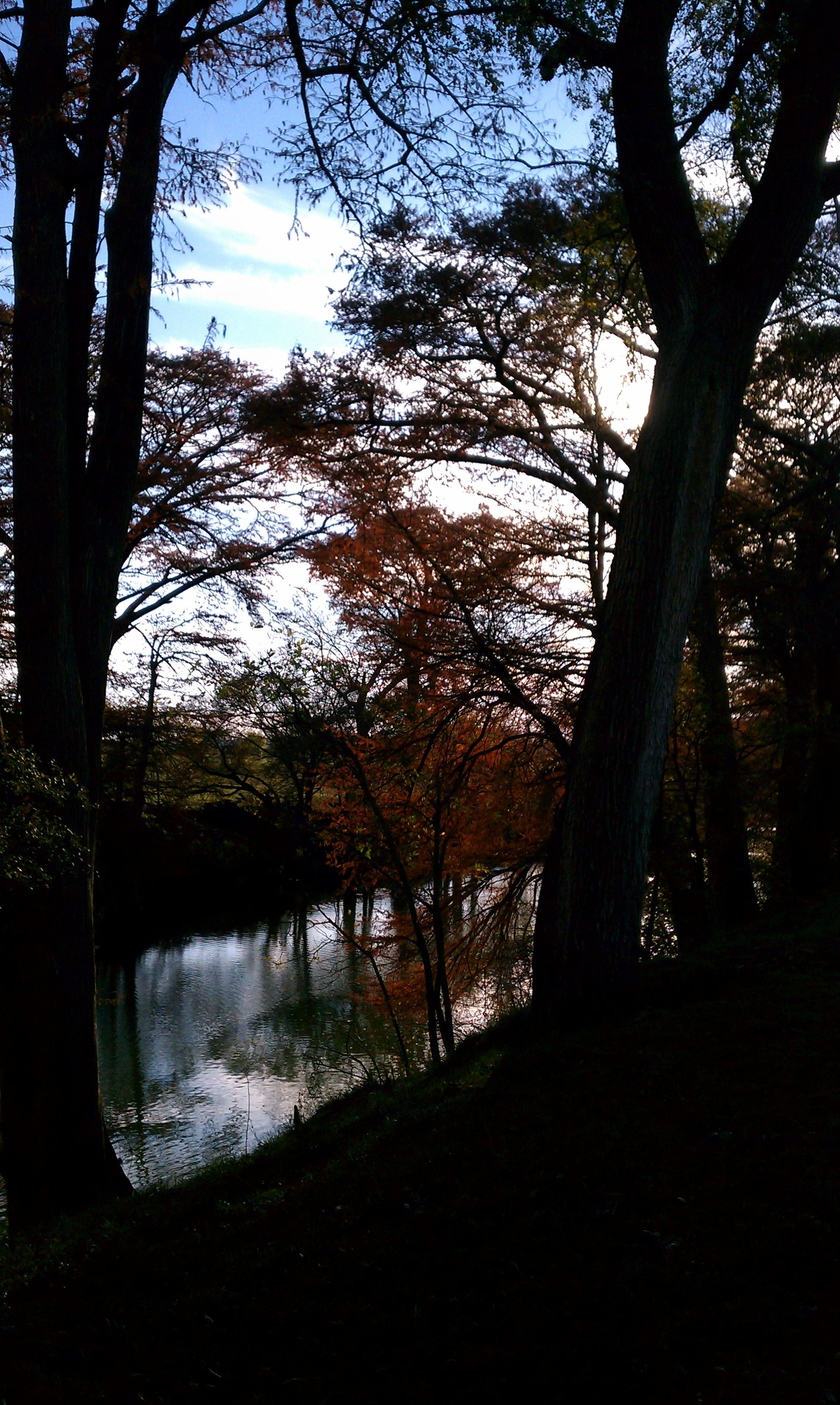 Guadalupe river at sisterdalecoffee hollow guadalupe