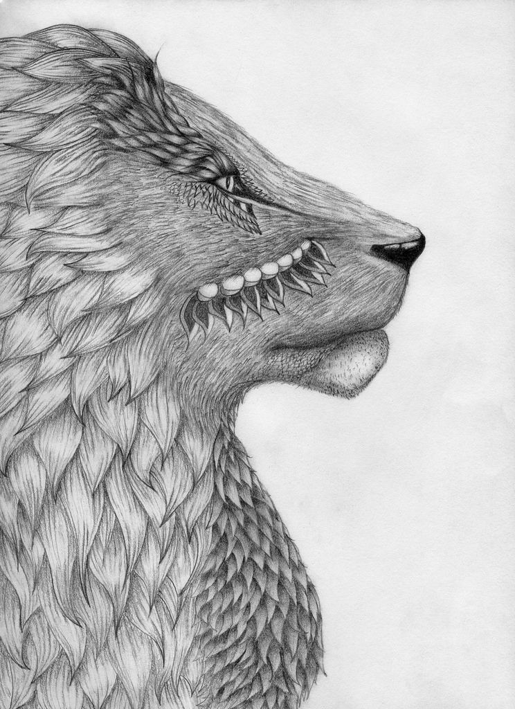 Pics For > Cool Animal Pictures To Draw | Pictures to draw ...