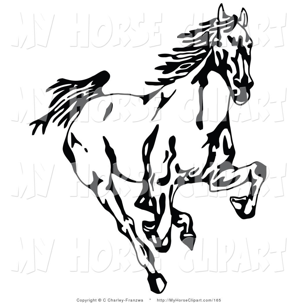clip art of a black and white wild mustang horse running forward rh pinterest nz