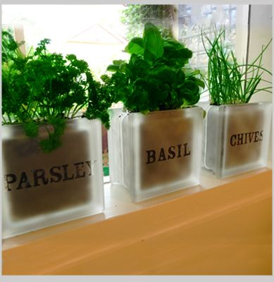 Captivating Garden Herb Pot Set   Parsley Basil Chives Herb Pots For Windowsills