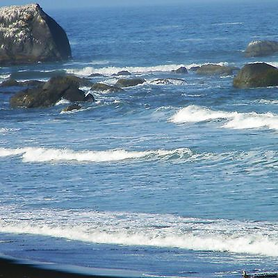 "/""Pacific Coast/"" 12x12  Photo Paper by McRic"