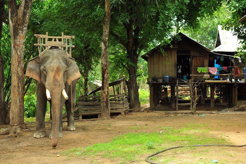 Ban Don village, Buon Me Thuot, Vietnam