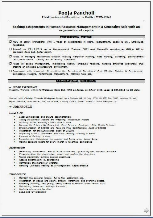 A Professional Curriculum Vitae Sample Template Example
