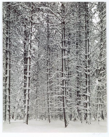 Ansel Adams / Winter Yosemite Valley / 1933-34 / gelatin silver print   The Metropolitan Museum of Art