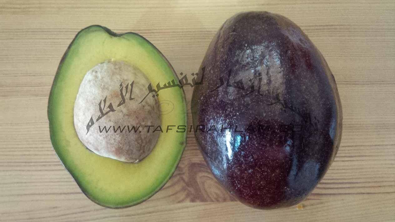 تفسير رؤية فاكهة الأفوكادو في المنام تفسير أزهار Avocado Fruit Vegetables
