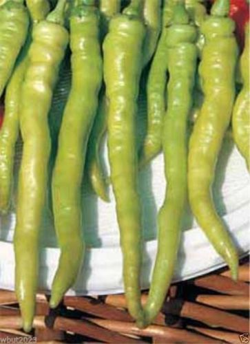 prevent-dry-mouth-sweet-pepper