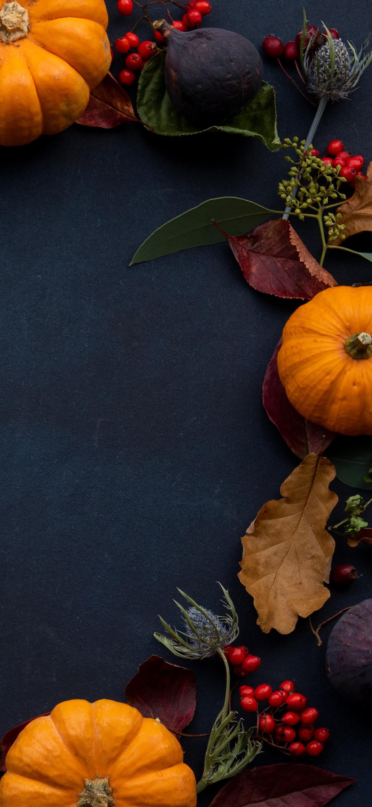 Orange Pumpkin Wreath Fall Iphone X Xs Max Autumn Wallpaper