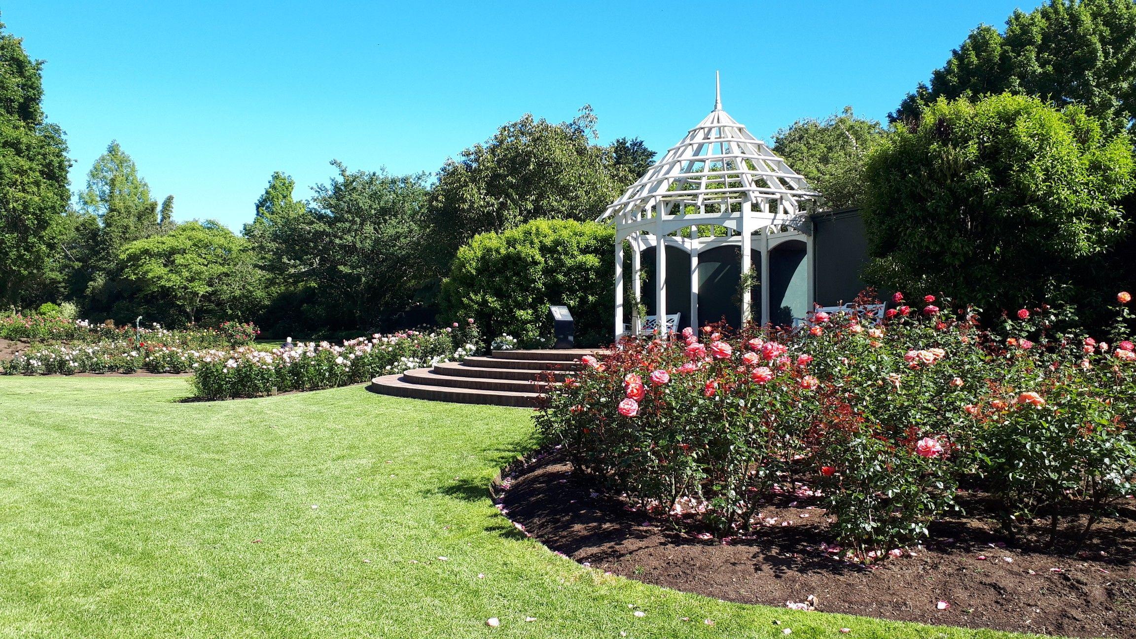 Rose Garden Hamilton Gardens New Zealand New Zealand Waikato Rose Garden