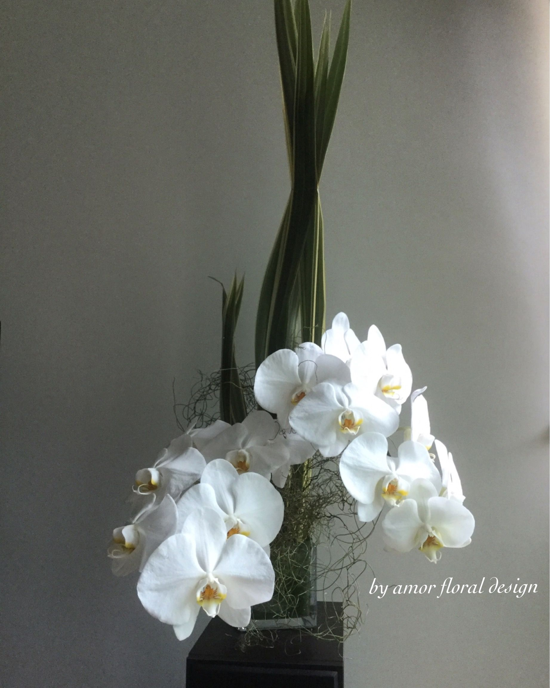 Orchids Flower Arrangement Green And White Colour Combination