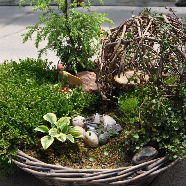 Fairy garden inspiration from Miniature Gardening. Gallery of many different fairy gardens.