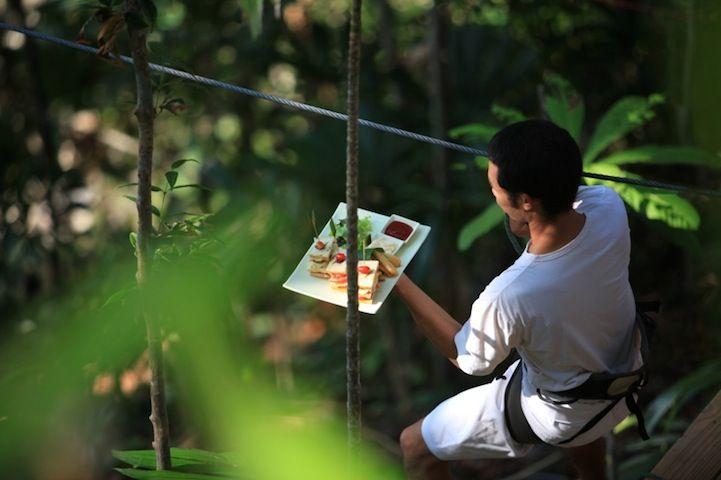 Thailand's High-Wire Treetop Restaurant - My Modern Metropolis