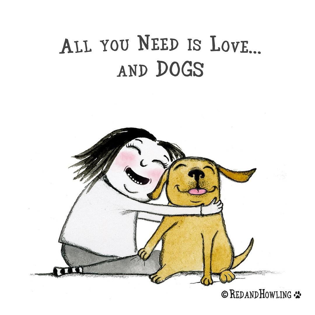 Lots Lots Of Dogs Dog Quotes Love Training Your Dog
