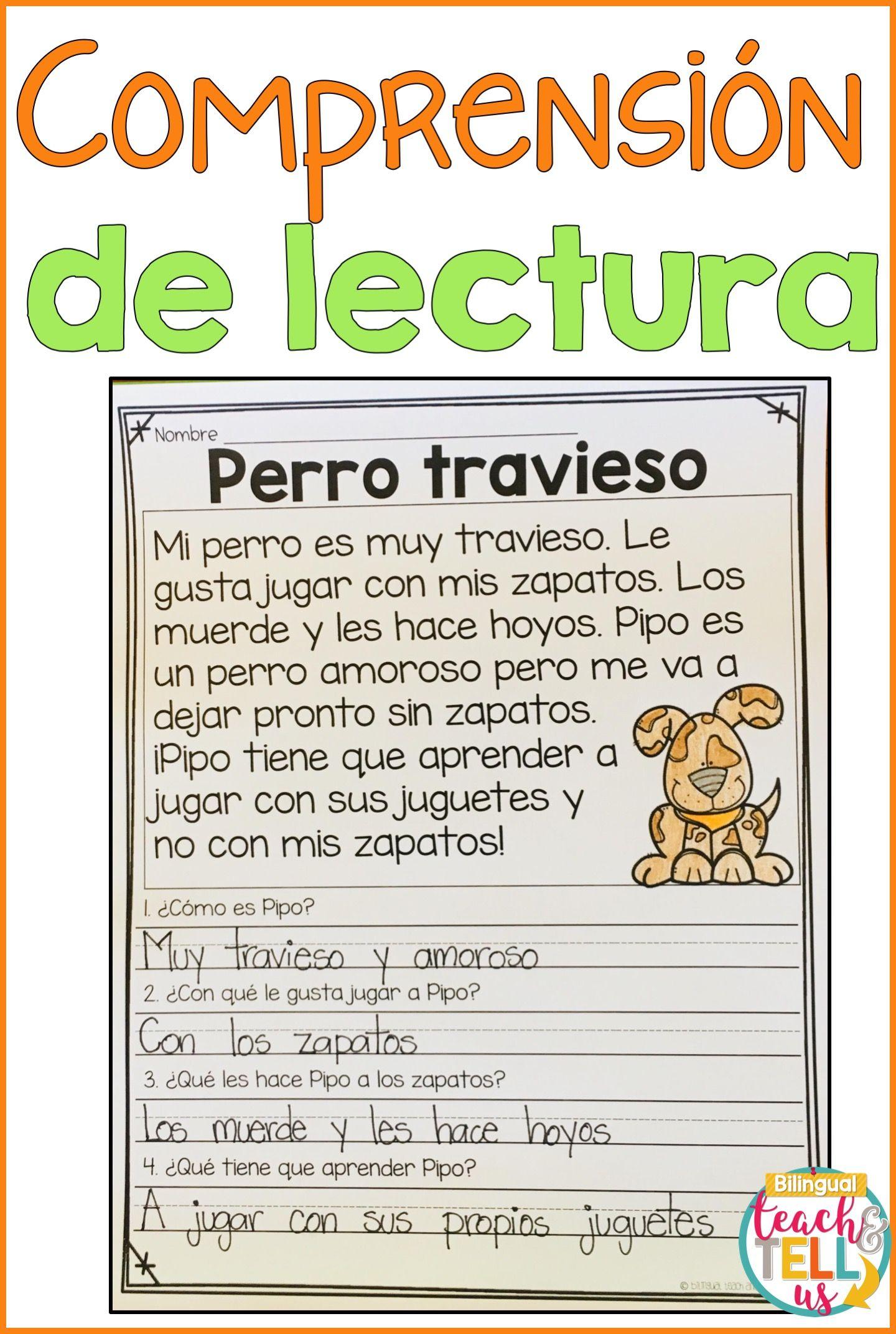 Lectura De Comprension En Espanol