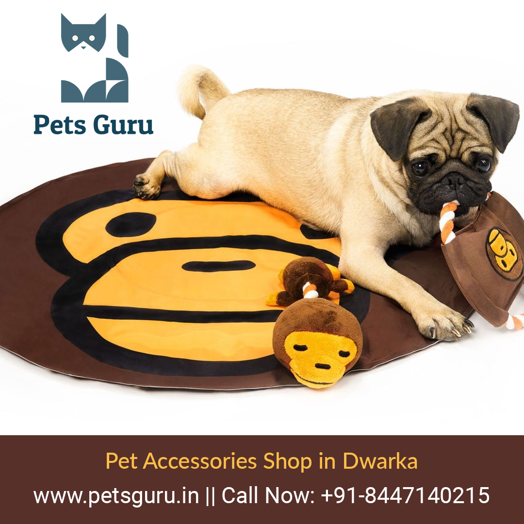 Online Shopping For Pet Accessories Store Accessories Online Pet Shopping Store En 2020