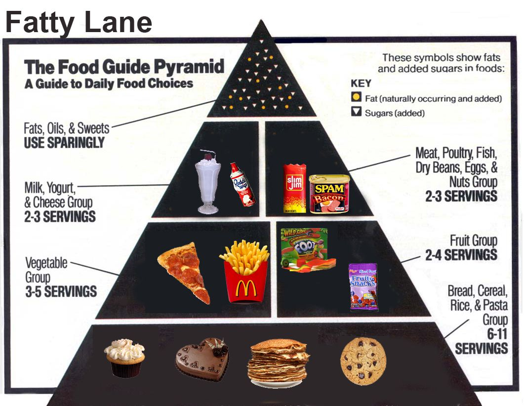 food guide pyramid recommended daily allowance The food and nutrition board addresses issues of safety, quality, and adequacy of the food supply establishes principles and guidelines of adequate dietary intake and renders authoritative judgments on the relationships among food intake, nutrition, and health.