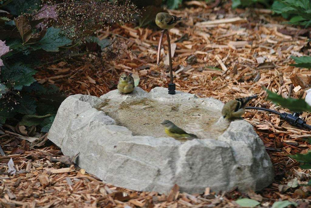 Birds Choice Rocky Mountain Ground Level Bird Bath Birdbaths ...