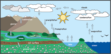 Module 4 This Is A Picture Of The Hydrologic Cycle In The Video Blue Gold Opponents Against The Privatization Of Water Groundwater Water Cycle Evaporation