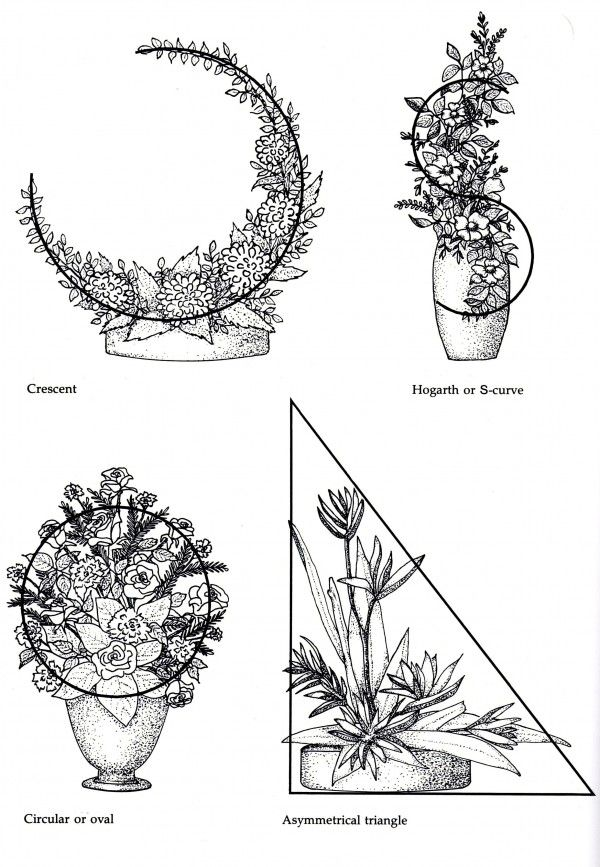 Line Drawings Of Flower Arrangements : Traditional line mass shippan point garden club