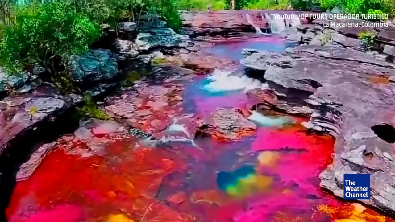 Cette Riviere Multicolore Est La Plus Belle Du Monde Videos From The Weather Channel Weather Com Beautiful Pictures Water Outdoor