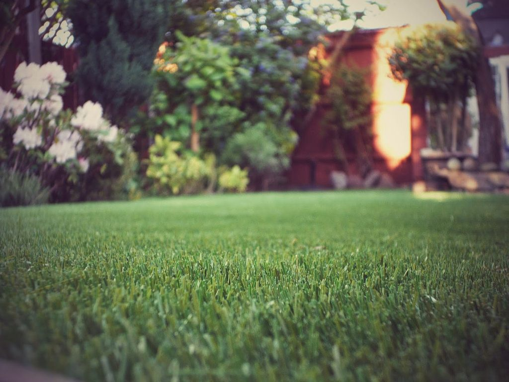 With the price of water rising rapidly and droughts in California, grass isn't as appealing as it once was. When frugal buyers see grass, they see a sky-high water bill that will eventually lead to a dead yard and a new project to be undertaken. Think about landscaping trends like xeric landscaping, native plants, and artificial turf to make your home more appealing to all home buyers.