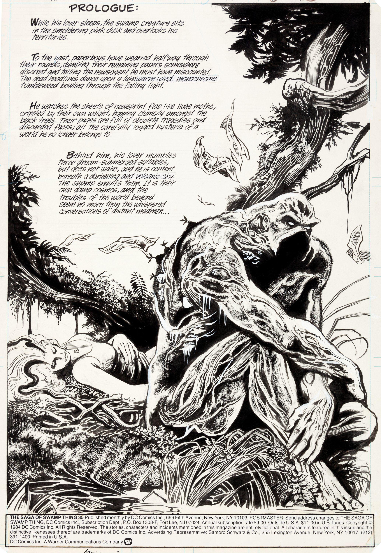 Stephen Bissette and John Totleben Saga of the Swamp Thing ...