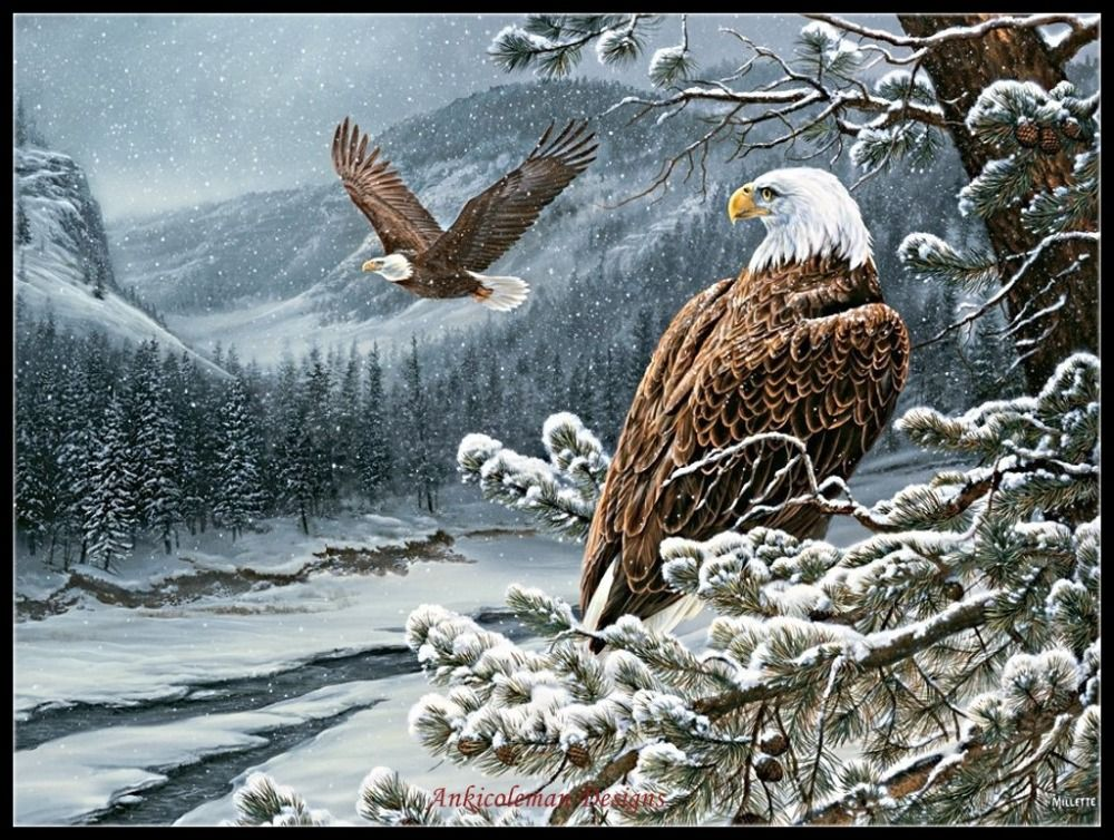 Chart Counted Cross Stitch Patterns Needlework DIY DMC Color Eagle in Flight