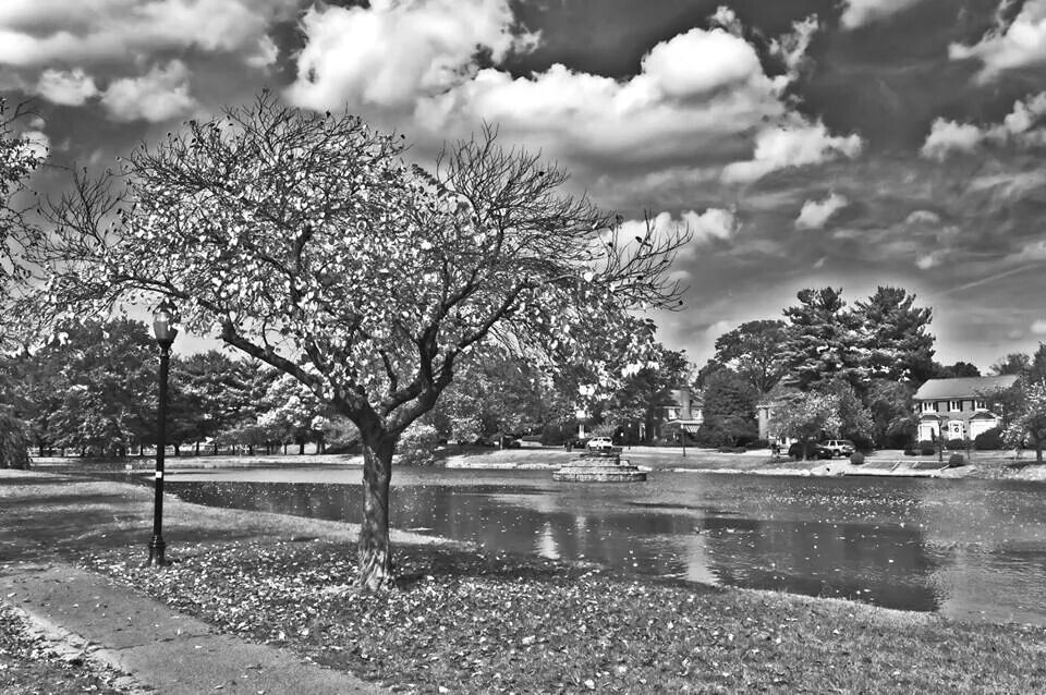 Baker park frederick maryland black white park maryland