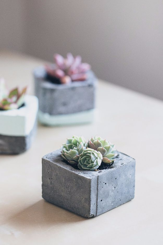 34 creative diy planters you will simply adore diy concrete succulent plants are perfect for decorating your home here are 29 ridiculously cute and easy diy succulent planter ideas solutioingenieria Image collections