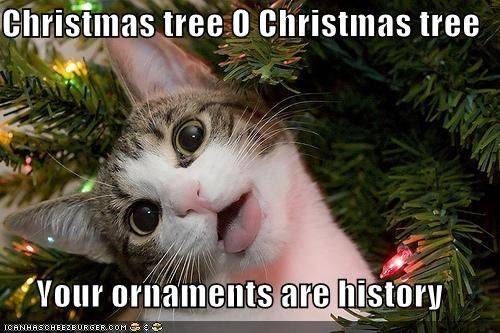 Christmas Tree O Christmas Tree Your Ornaments Are History Christmas Memes Funny Christmas Cats Christmas Memes