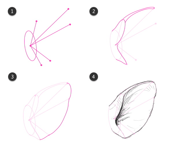 How to draw pig ears draw it paint it pinterest pig ears how to draw pig ears pronofoot35fo Images