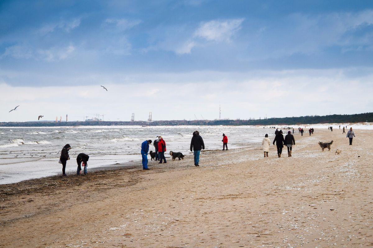 Hundestrand an der Ostsee Ostsee Urlaub mit Hund auf der Insel Usedom in Deutschland