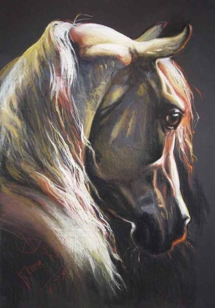 """Andalusian horse"" dry pastel crayon 100X70 2009 by Kamila Karst www.kamakarst.pl"