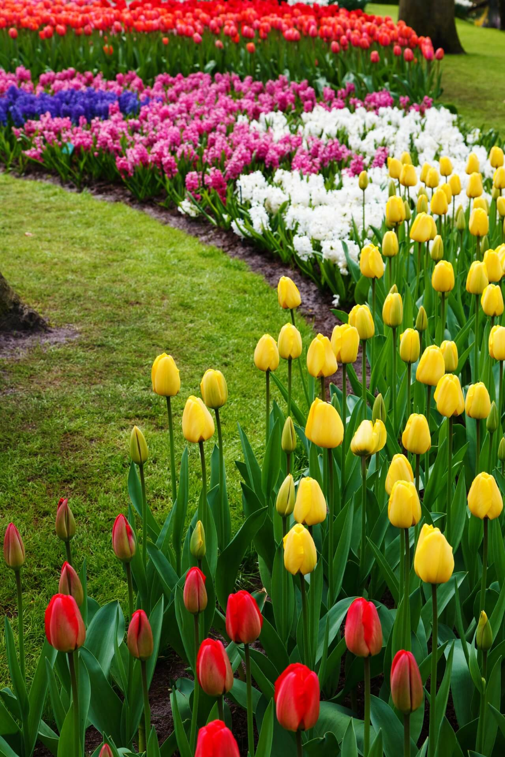 27 Gorgeous And Creative Flower Bed Ideas To Try Tulips Garden Flower Bed Designs Gorgeous Gardens