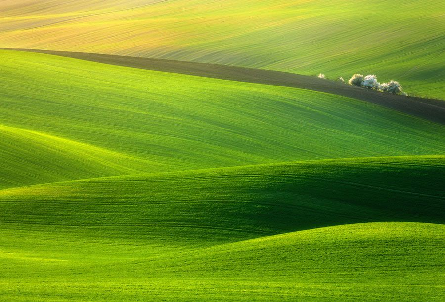 50 Mind Blowing Examples Of Landscape Photography Landscape Photos Beautiful Nature Wallpaper Green Nature