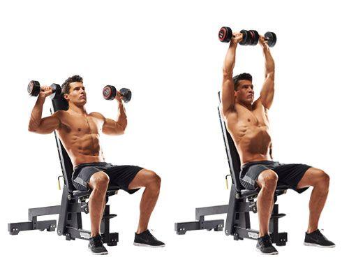 how to do seated dumbbell shoulder press exercise | Best shoulder workout,  Workout programs, Shoulder workout