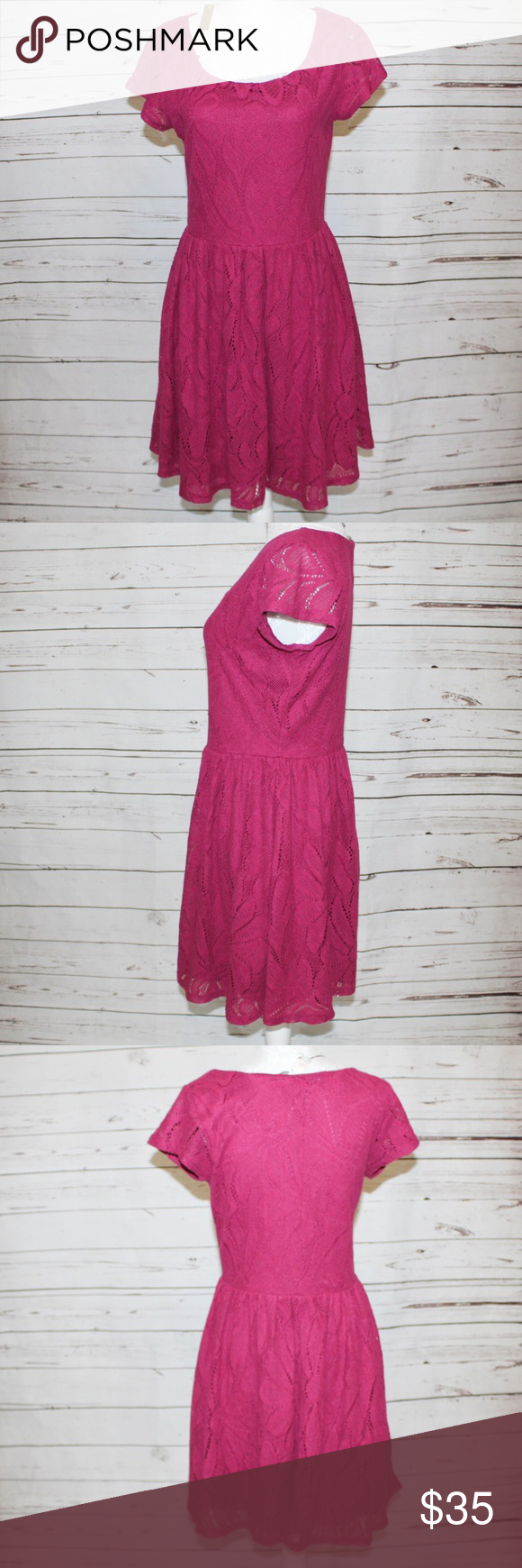 Lauren Conrad Lace Fit and Flare Dress NWT NWT