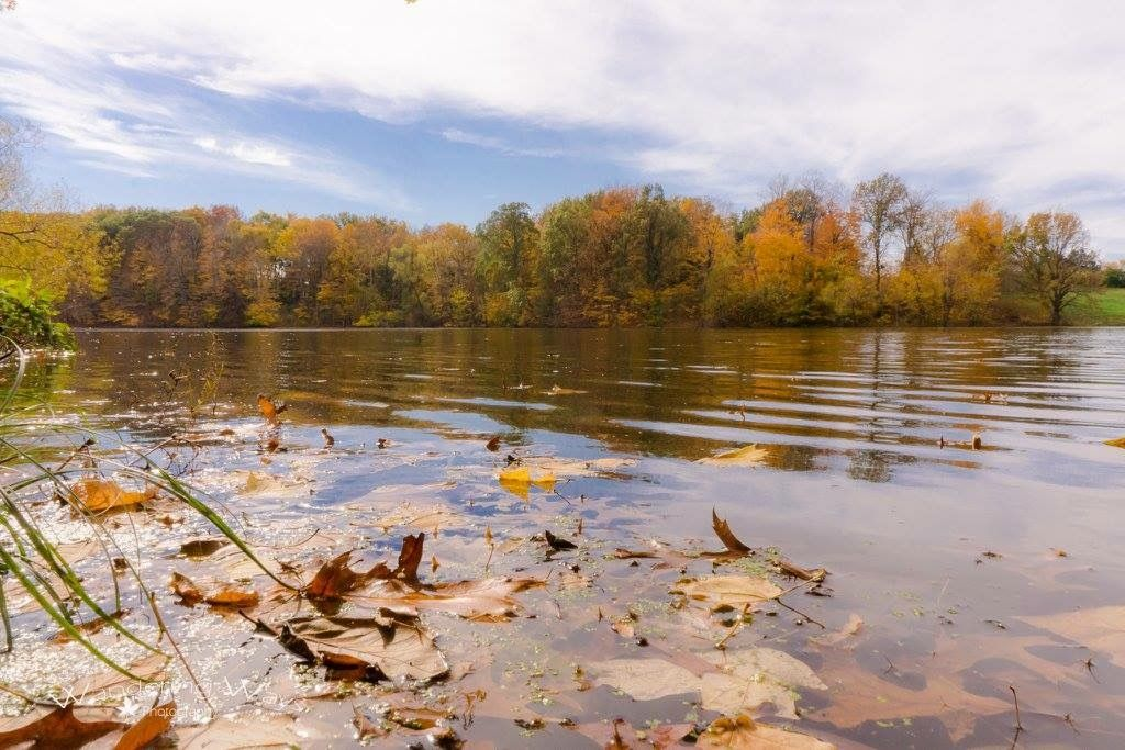 Autumn colors on the lake at Prairie Creek Park in Vigo County Indiana captured by Wandering Ways Photography- Amy 2016