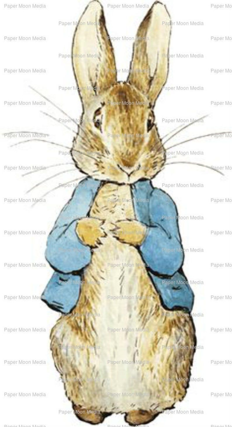 Digital Illustration Beatrix Potter Peter Rabbit Instant Etsy In 2020 Cute Animal Illustration Baby Art Beatrix Potter