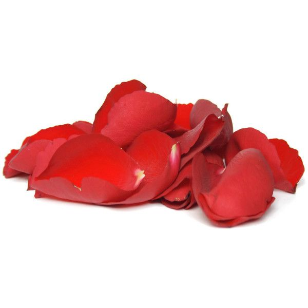 Free red rose petals Wallpaper - Download The Free red rose petals... ❤ liked on Polyvore featuring flowers, fillers, backgrounds, red and plants