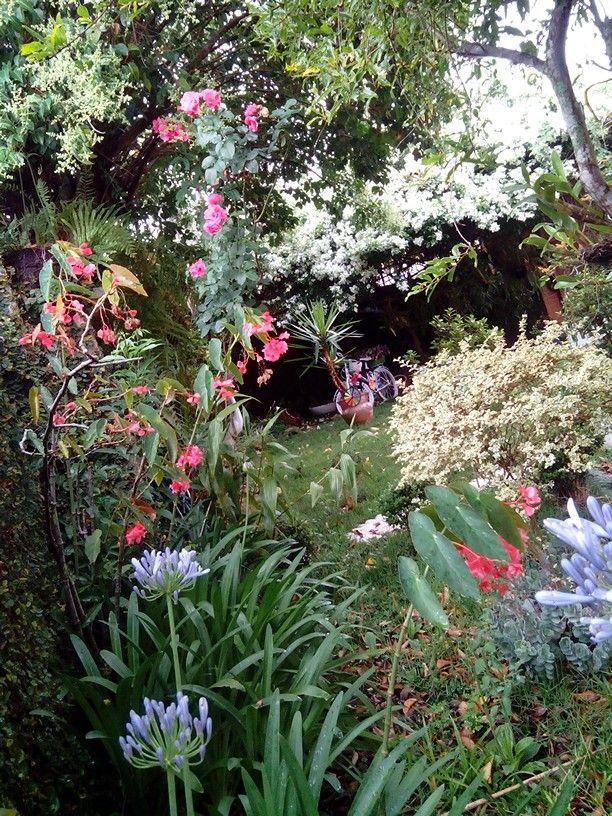 Meu jardim florido