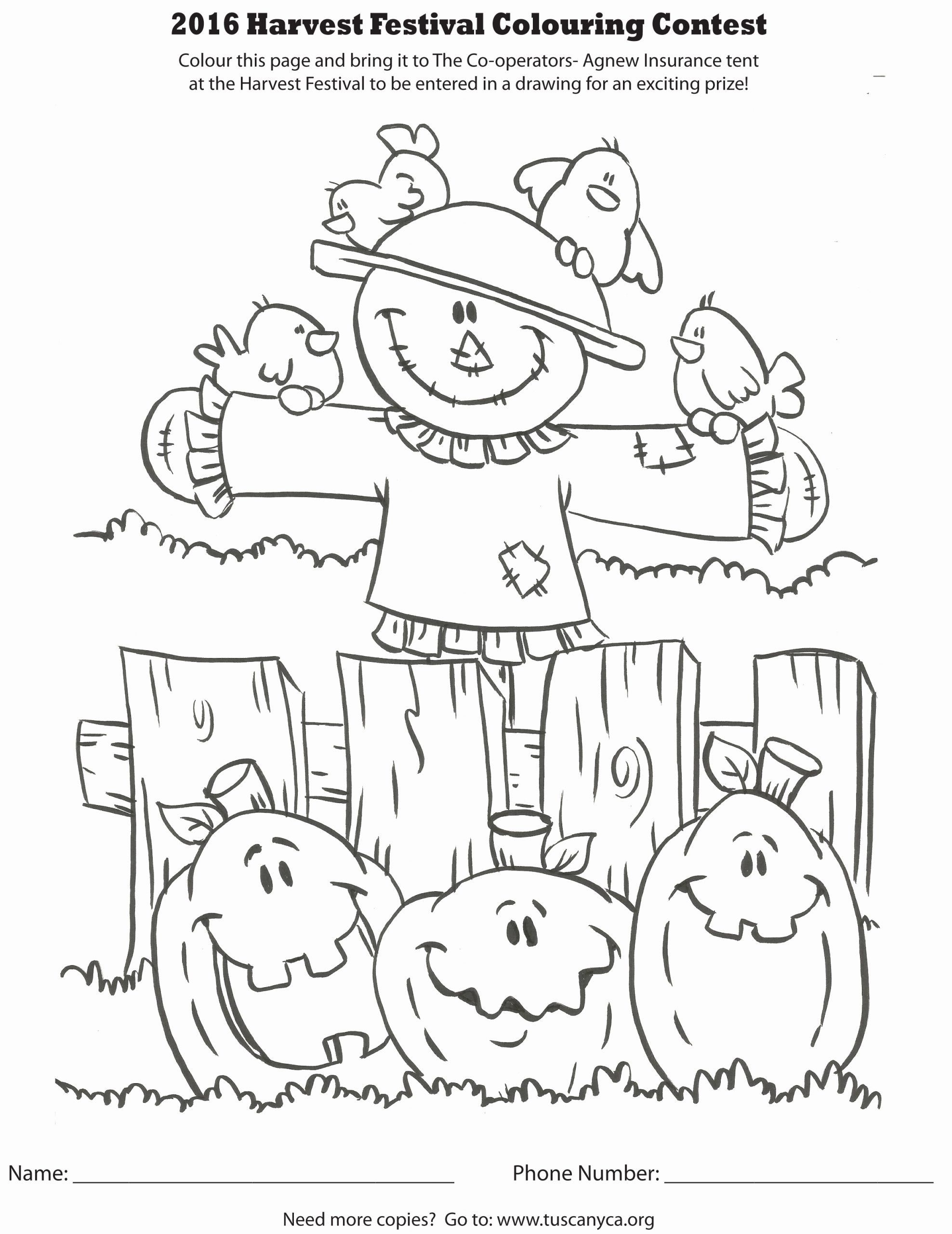 Coloring Contest For Adults Beautiful Harvest