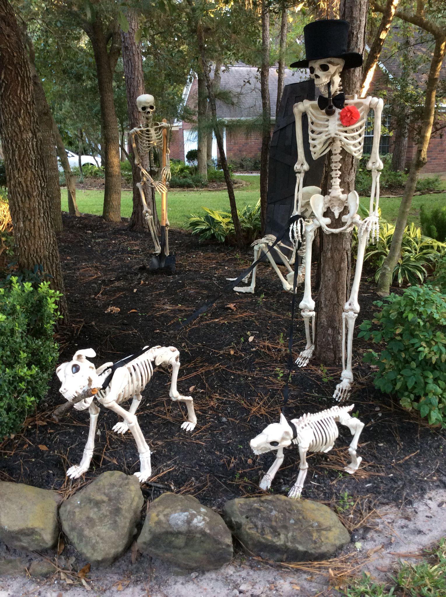 Halloween Skeleton Decor Halloween skeletons, Fall